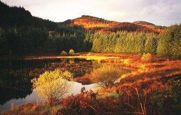 scotland in the autumn - Google Search