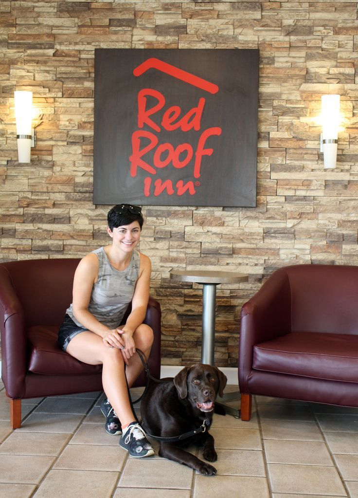 Where To Stay On A Road Trip With Your Dog Road trip