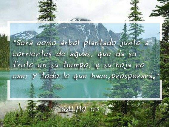 Salmo 1:3