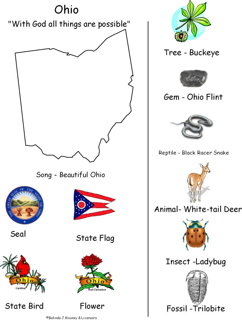 Official State Of Ohio Symbols Ohio Map Black White Ohio Becomes A