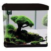 Lifestyle 29 Complete Glass Aquarium 38cm 29l Gloss Black Fish Tank Stand Glass Aquarium Aquarium Fish Tank