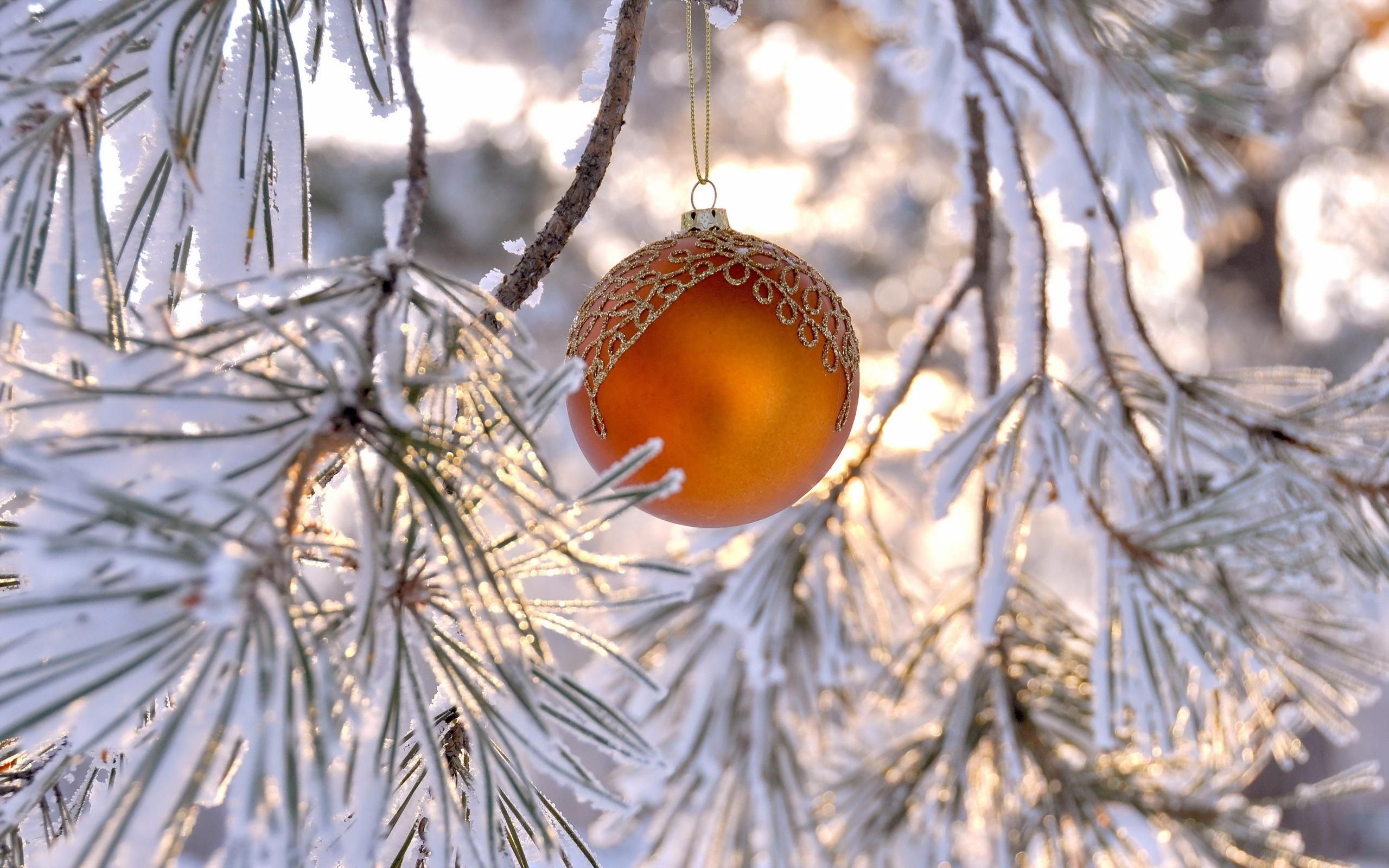 Christmas Winter Yahoo Image Search Results Magic In Terms Of A Multiple Control You39ll Need One As Shown The
