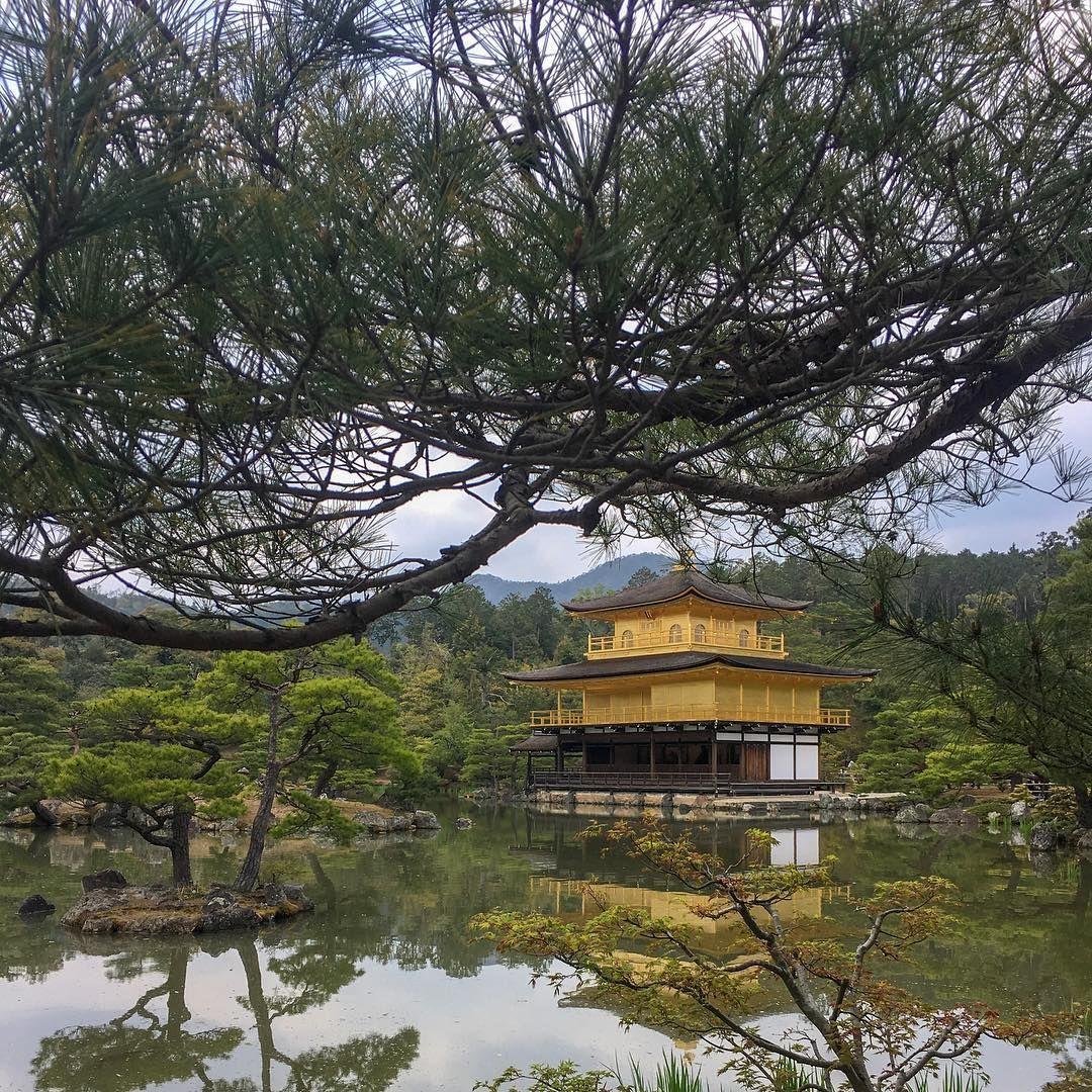 A paisagem revela  . #japantrips #visitjapan #traveljapan #amazingjapan #triptojapan #explorejapan  A paisagem revela  . #japantrips #visitjapan #traveljapan #amazingjapan #triptojapan #explorejapan #japan #wanderlust #travel #inspiration #kyoto #goldenpavilion #kinkajuji #temple