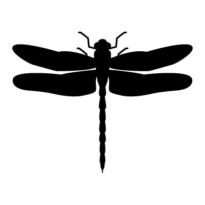 vector dragonfly vector art dragonfly stock vector vectoriel rh pinterest com dragonfly vector illustration dragonfly vector free download