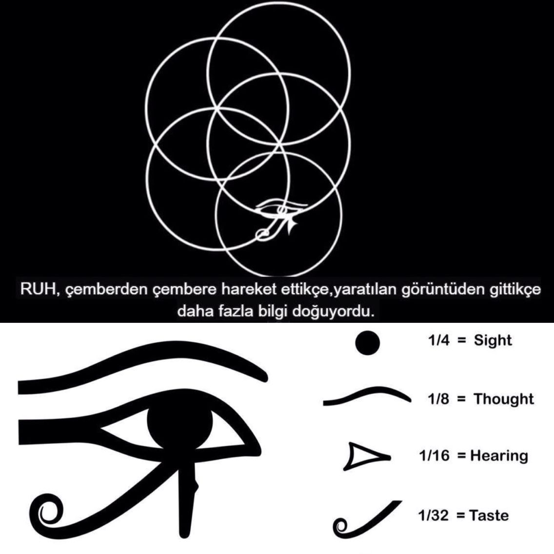 Eye of horustual geometry chart flower of life scale ruh eye of horustual geometry chart flower of life scale ruh soul pineal gland nvjuhfo Image collections