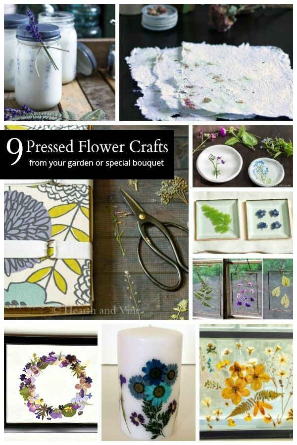 Learn about easy and creative pressed flower ideas you can make with blooms from your backyard or  bouquet special event also easily garden diy rh pinterest