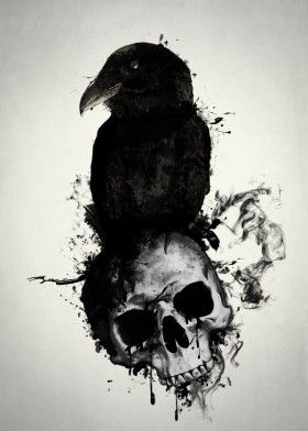raven skull death viking norse mythology pagan hugin munin huginn muninn bird…