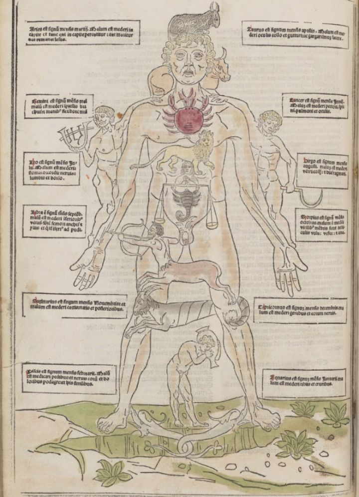 One of the Earliest Illustrated Medical Books Offers a ...