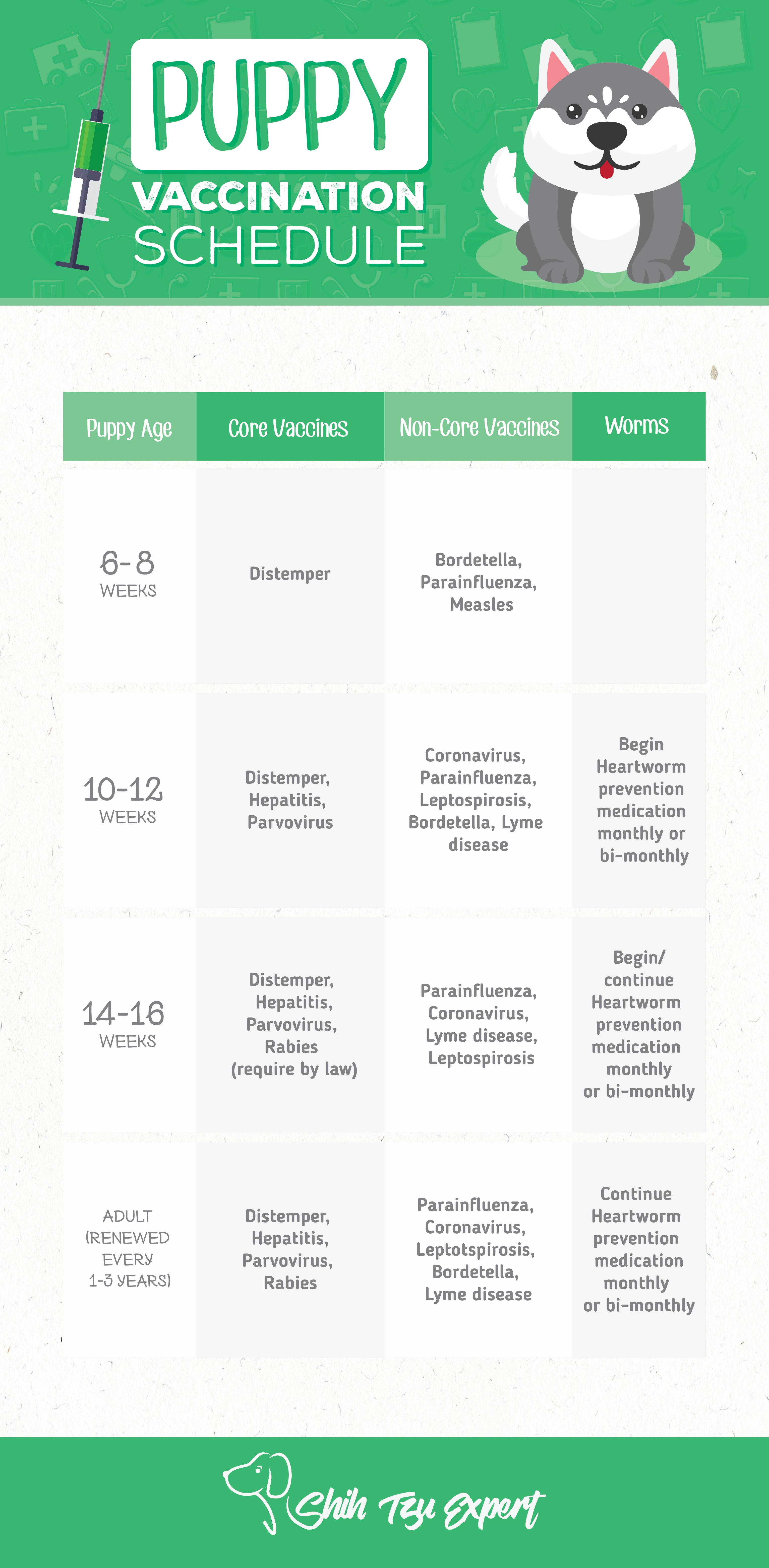 Shih Tzu Vaccination Schedule