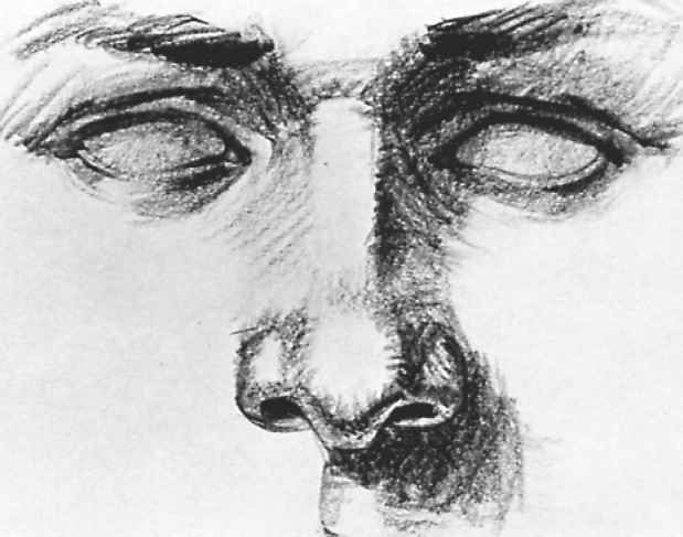Through the eyes of john baselmans how to draw nose in pen and ink through the eyes of john baselmans how to draw nose in pen and ink 1 ccuart Image collections