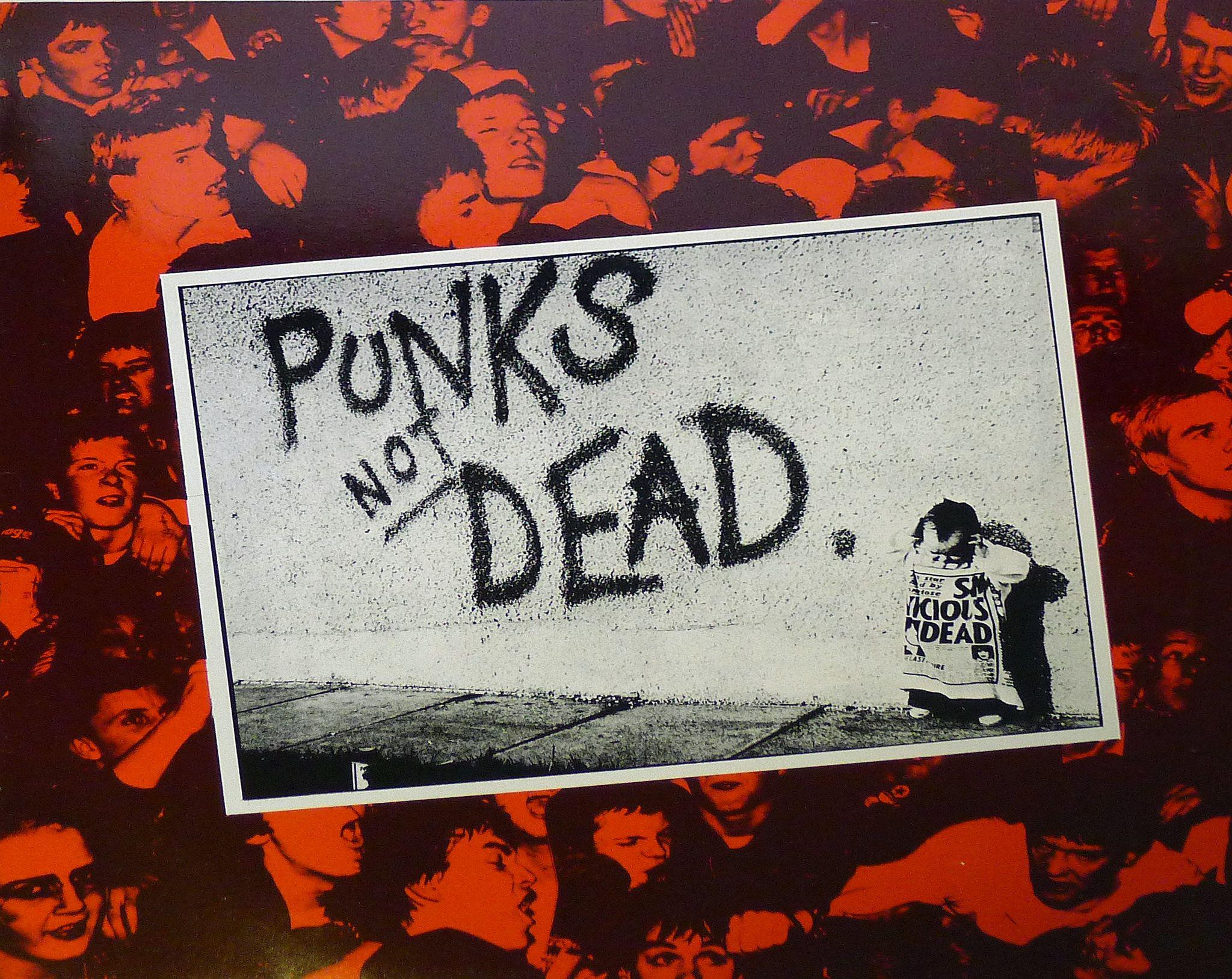 The Exploited Punk S Not Dead Rr 12 Lp Vinyl Punks Not Dead Punk Exploitation