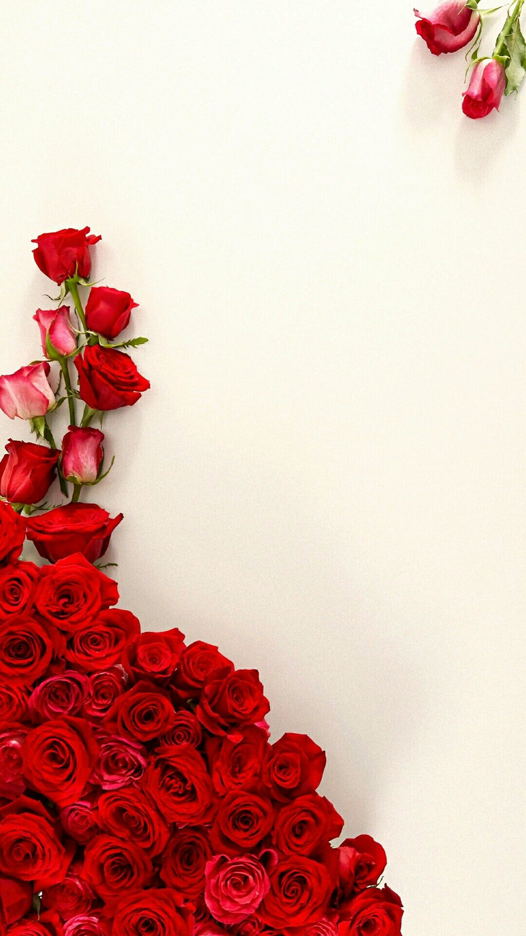 Wallpaper By Artist Unknown Red Roses Wallpaper Nature
