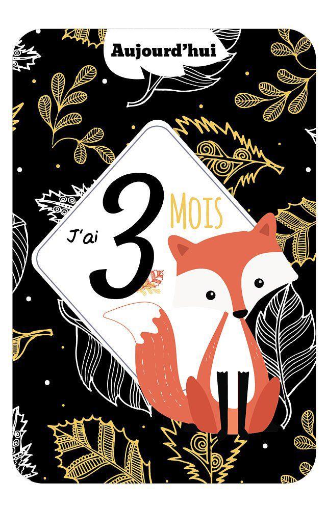 12 Cartes étapes Bébé, thème renard dune qualité haut de gamme pour garder un souvenir de sa premier année. Par Omade