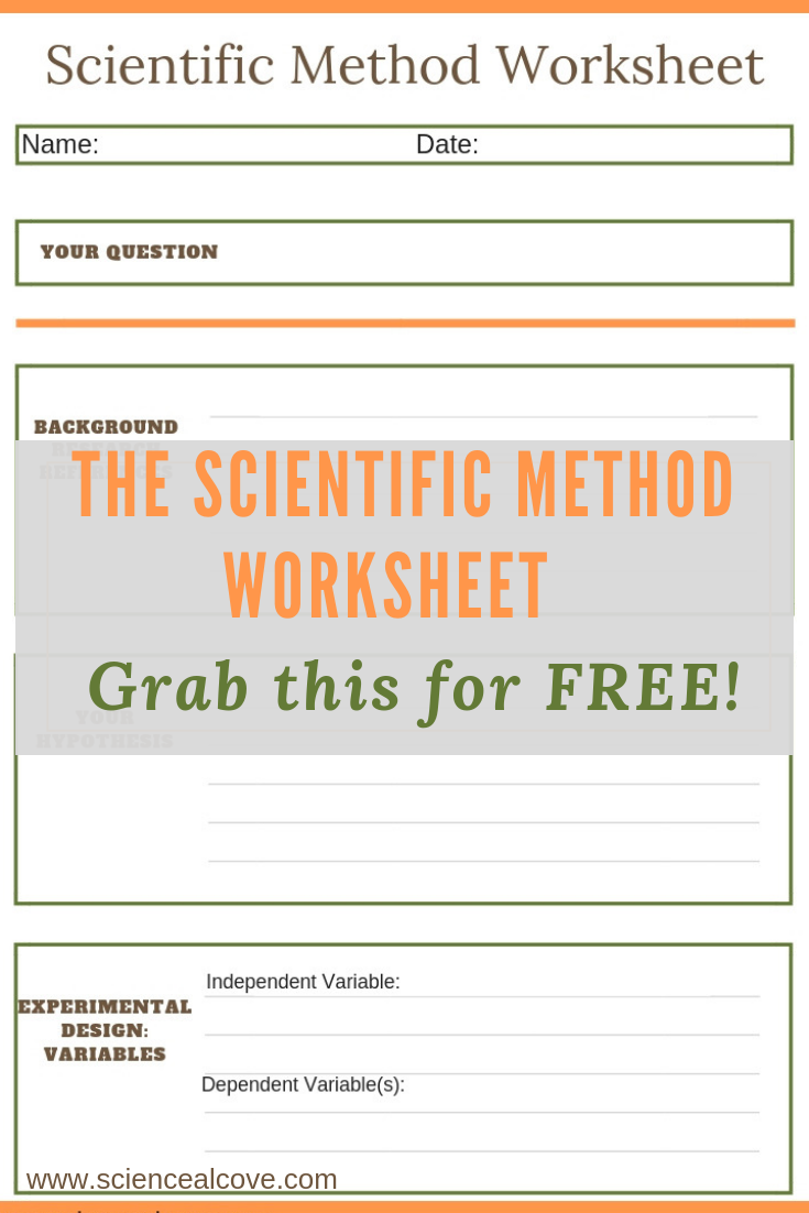 8 Steps Of The Scientific Method You Need To Know Scientific Method Scientific Method Worksheet Scientific Method Steps