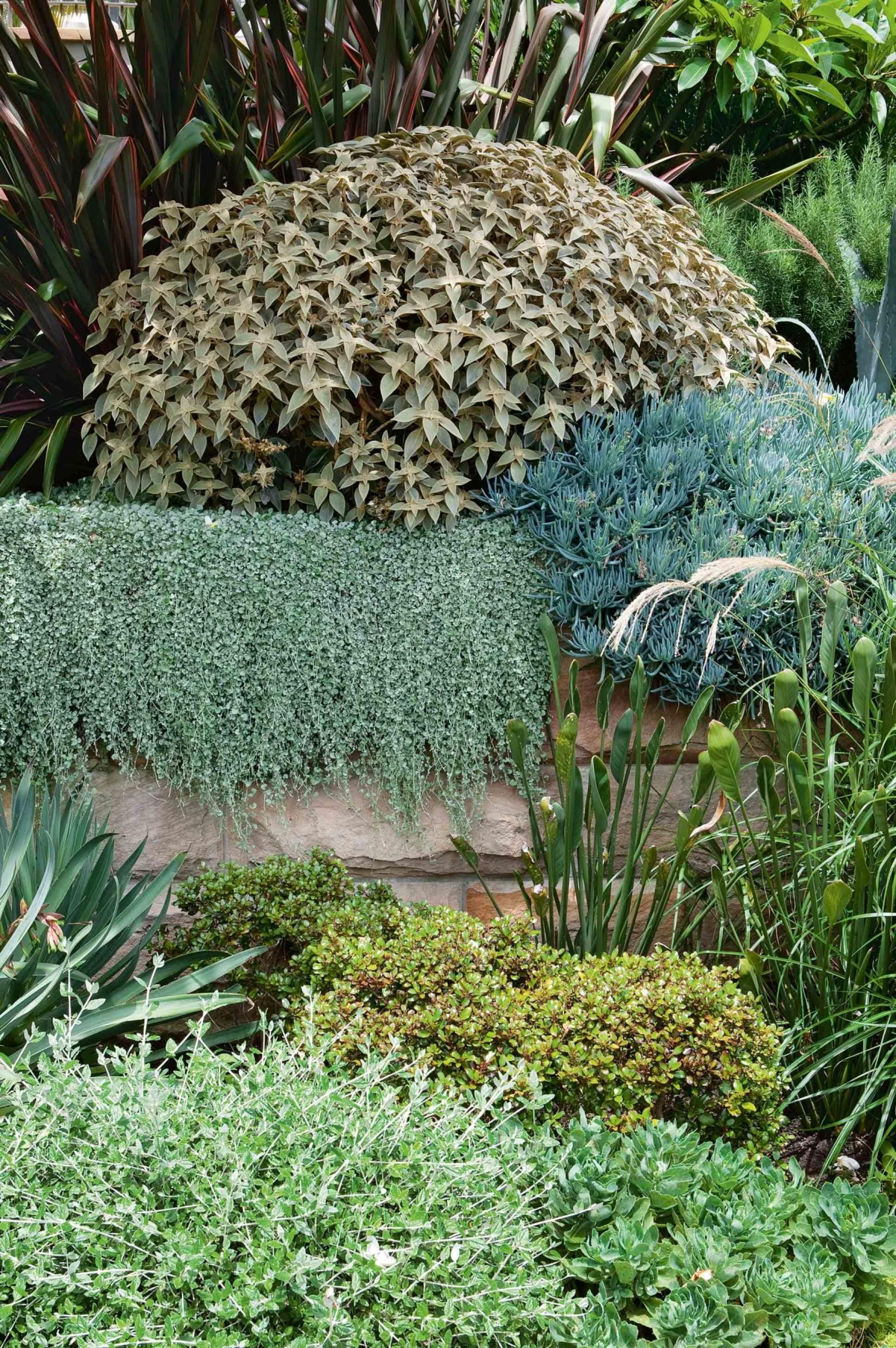 design ideas from an incredible multi tiered garden photography
