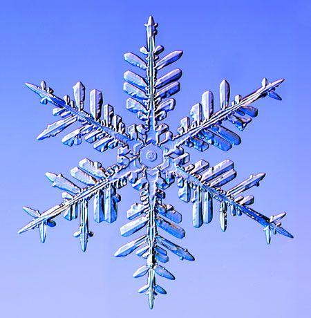 Credit: Kenneth Libbrecht/Barcroft Media A fernlike stellar dendrite snowflake