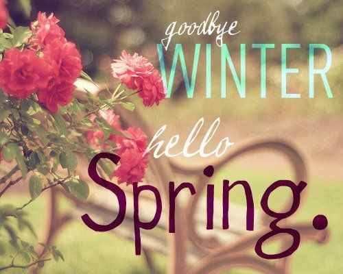 Image result for goodbye winter hello spring