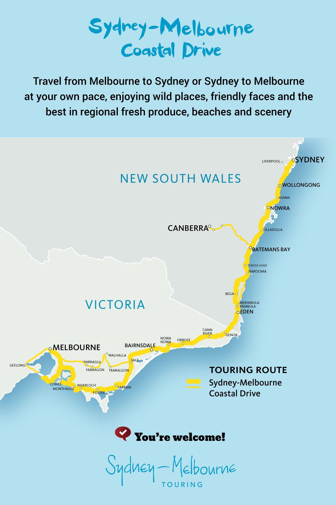 The Coastal Drive Between Melbourne Sydney A Road Trip Road Trip Australian Travel Australian Road Trip