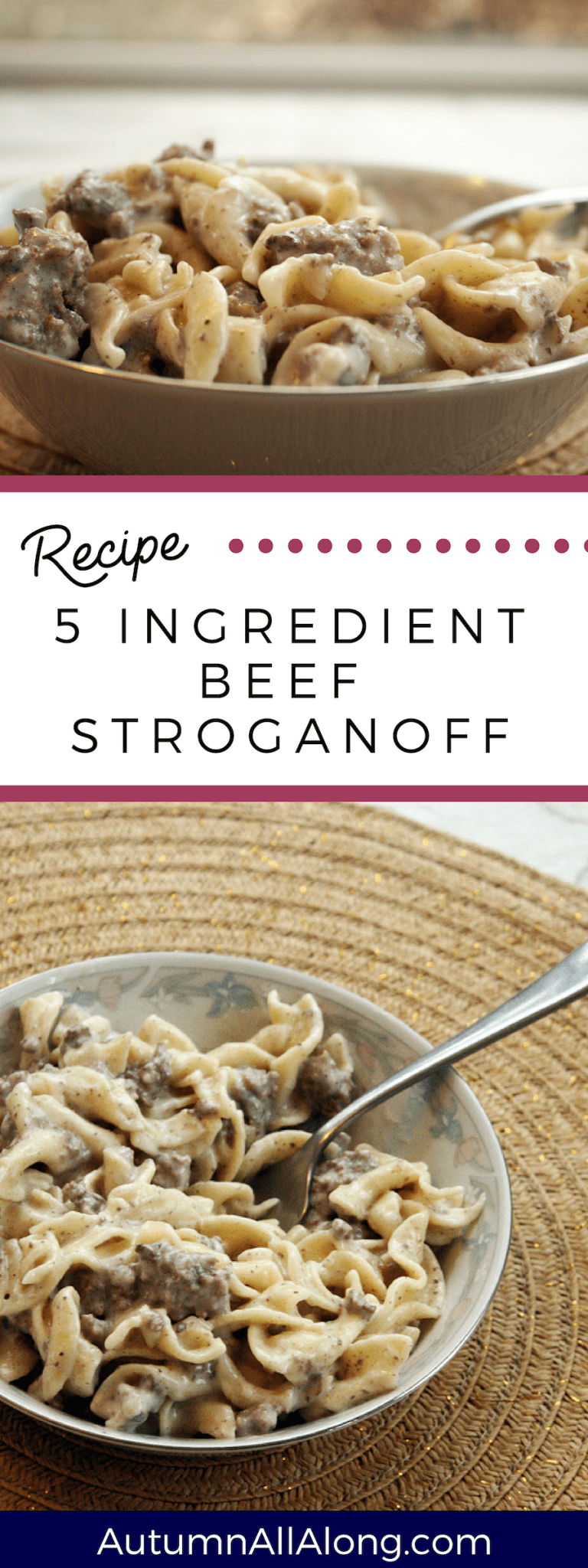 5 ingredient beef stroganoff recipe | fast and easy meal — Autumn All Along