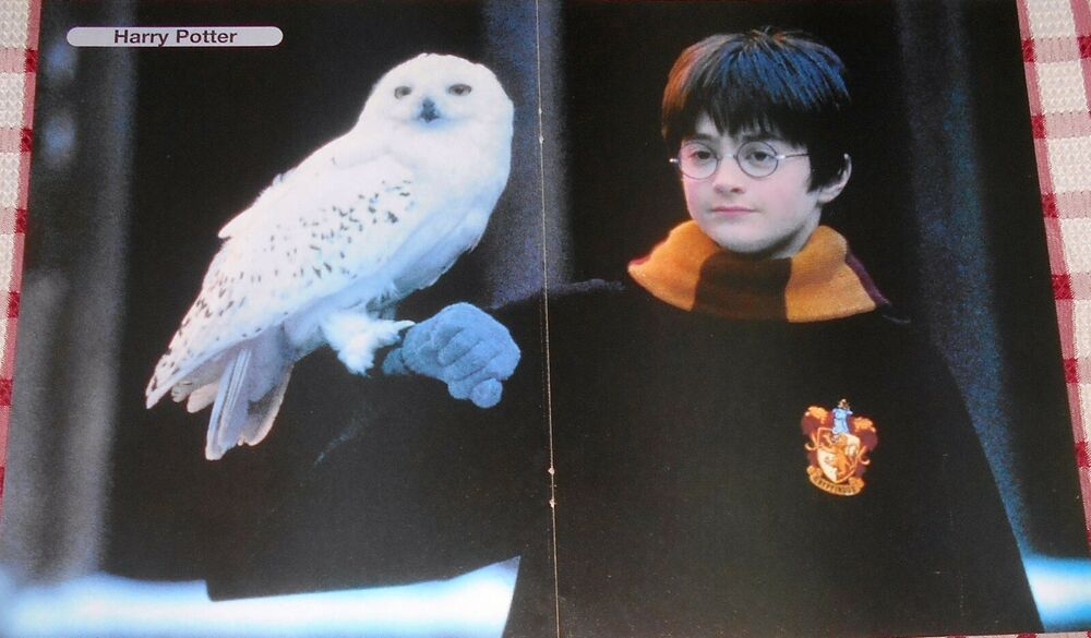 Photo of Daniel Radcliffe HARRY POTTER – Magazine Poster (A3)