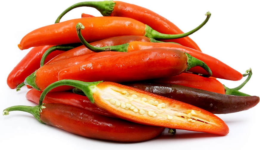 Red Serrano Chile Pepper Red Serrano Chile Peppers Can Be Used Interchangeably In Recipes That Call For Green Serranos Add Fresh Or Roasted Red Serrano To Pico