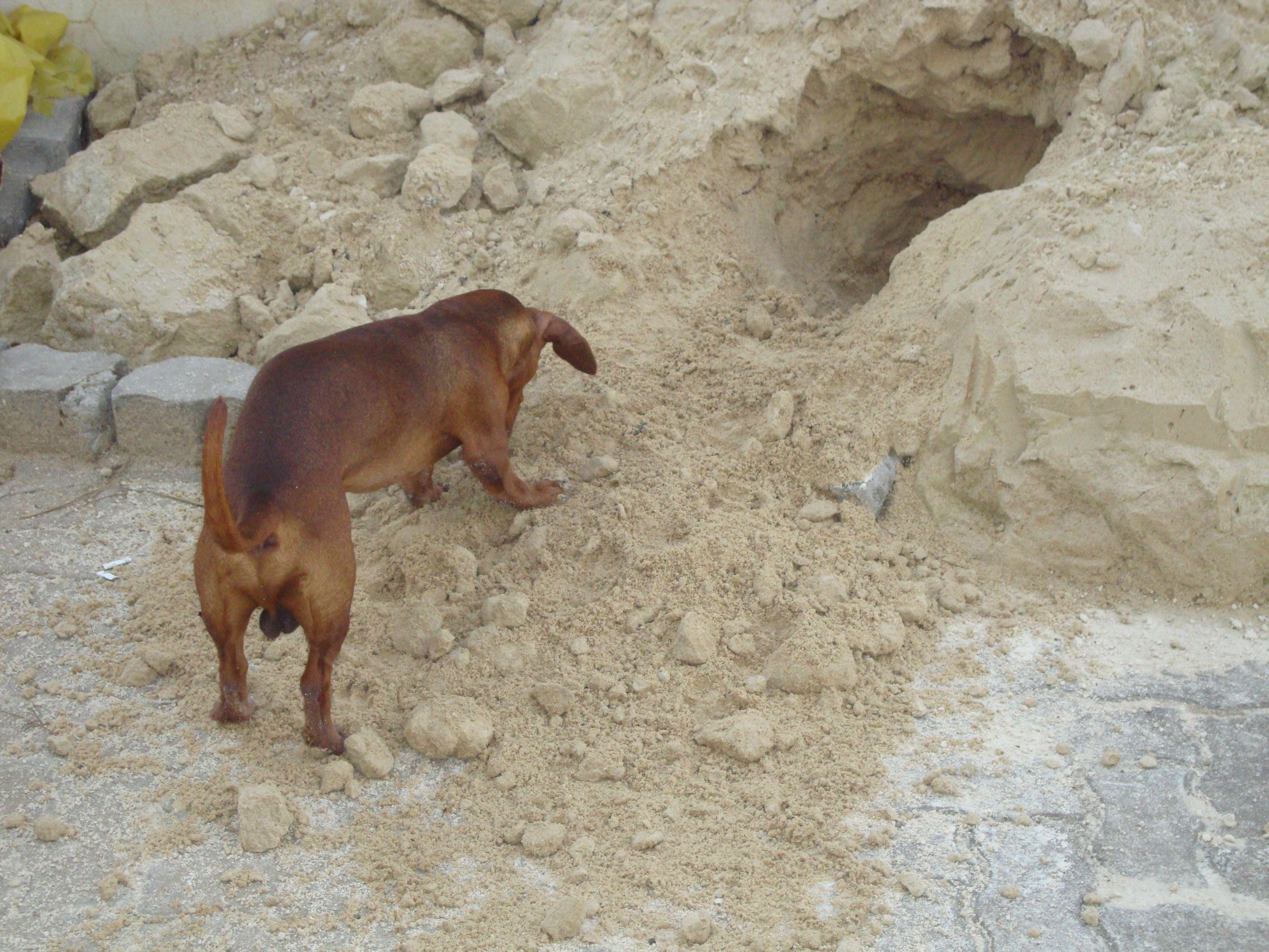 Fazendo buraco!!!