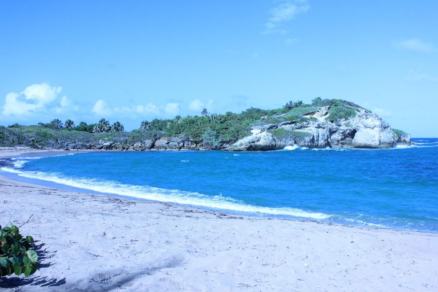Visit The Private Coconut Cove Beach Property For An