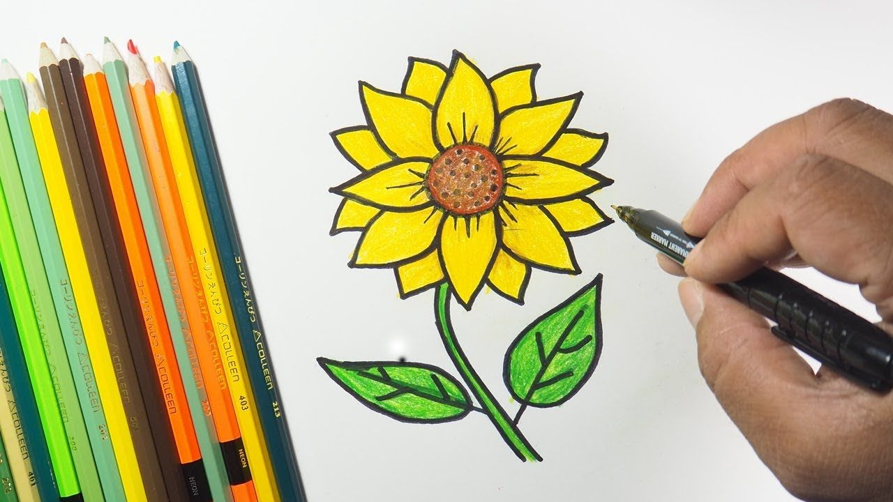 How To Draw Sunflower With Paper Easy Step By Step Sunflower Drawing Sunflower Drawings