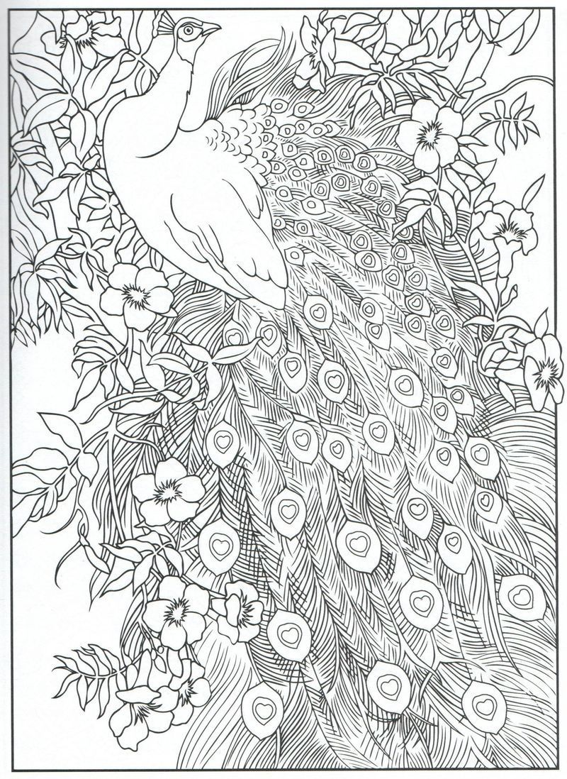 Christmas Coloring Pages 40 Printable Christmas Coloring Etsy In 2021 Peacock Coloring Pages Mandala Coloring Pages Designs Coloring Books