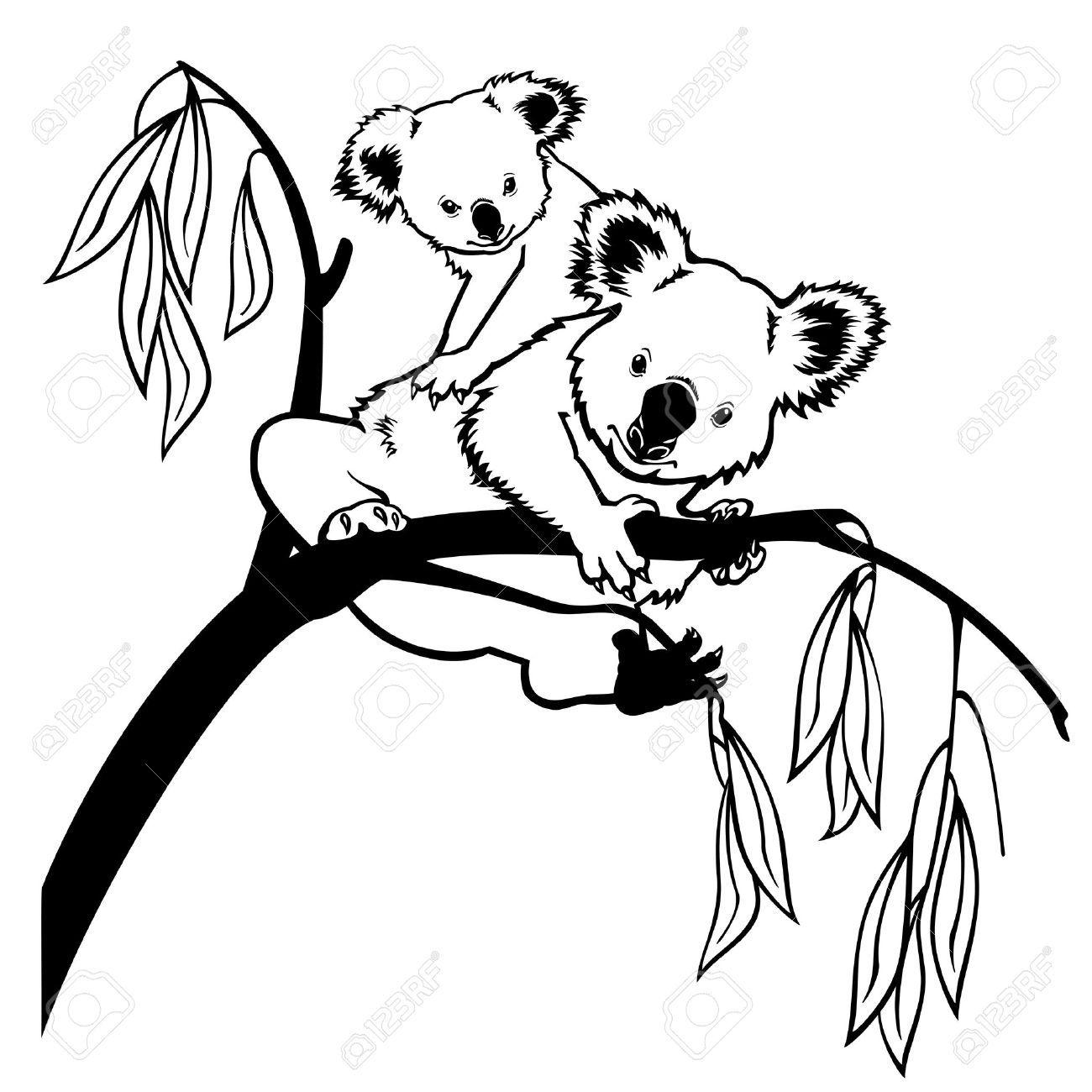 Koala Bear Koala Bear With Joey Climbing Eucalyptus Tree Black And White Picture Isolated On Koala Bear Koala Tree Sketches