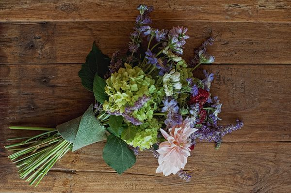 Late Summer Blooms: Scabiosa Pod | Late summer, Early fall weddings ...