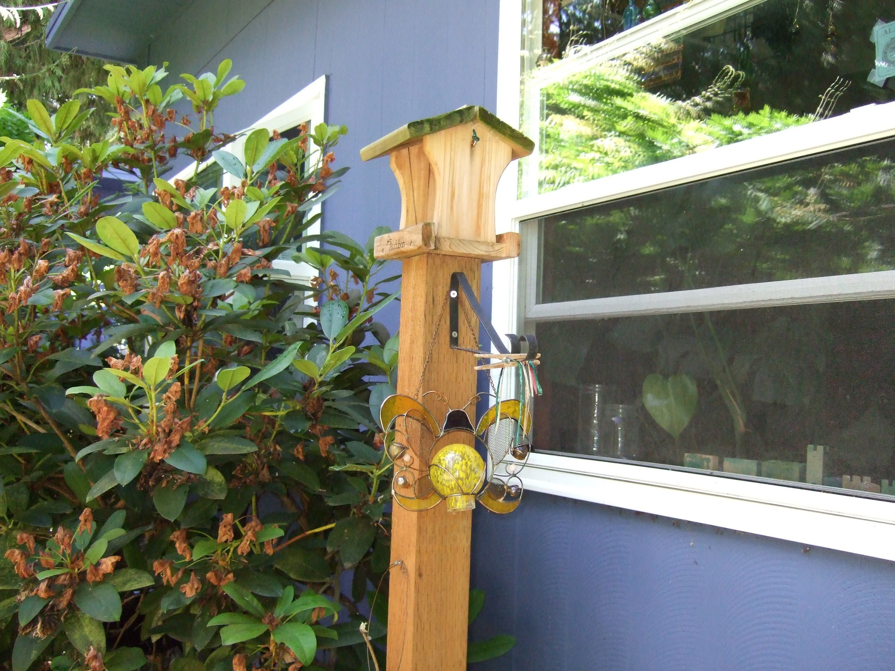 Bird Feeder Outside Preschool Classroom Kids Can Watch