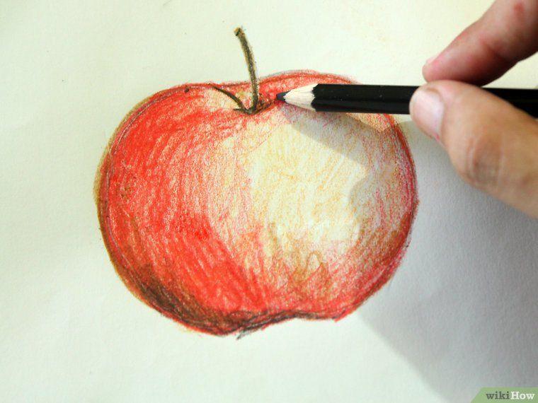 Utiliser Des Crayons Aquarellables Crayons Aquarelles