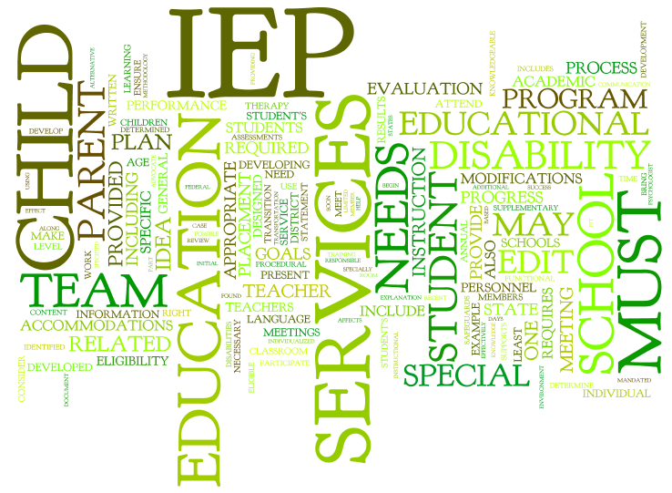 "Image result for IEP""s"