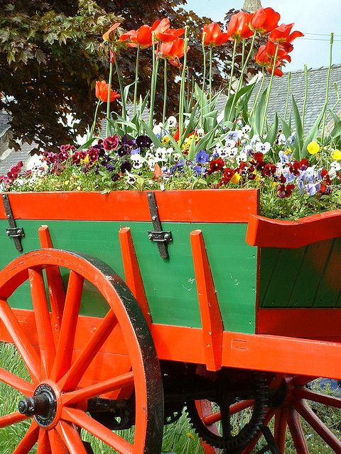 Colorful Display Of Flowers In An Equally Colorful Cart!