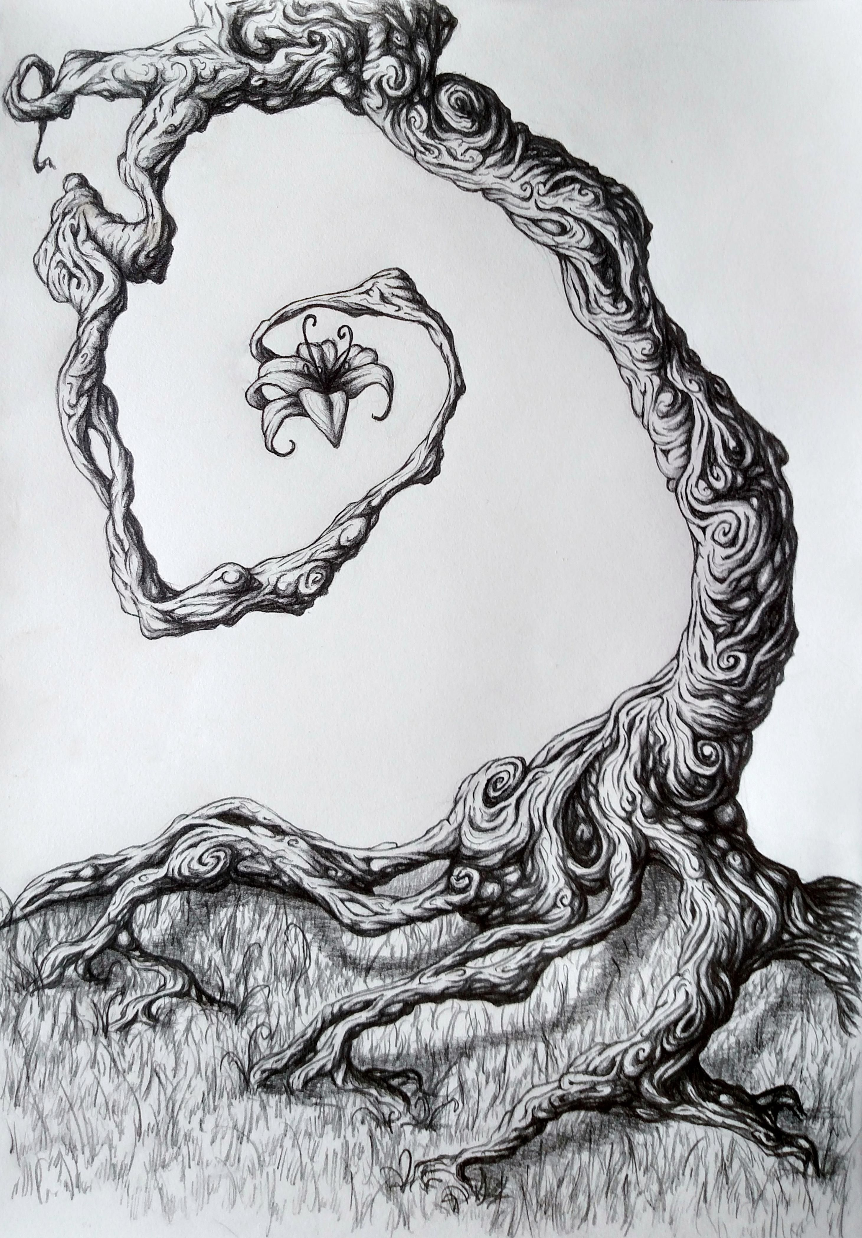Twisted tree pencil 9x12 http ift tt 2ctfy0h designs to
