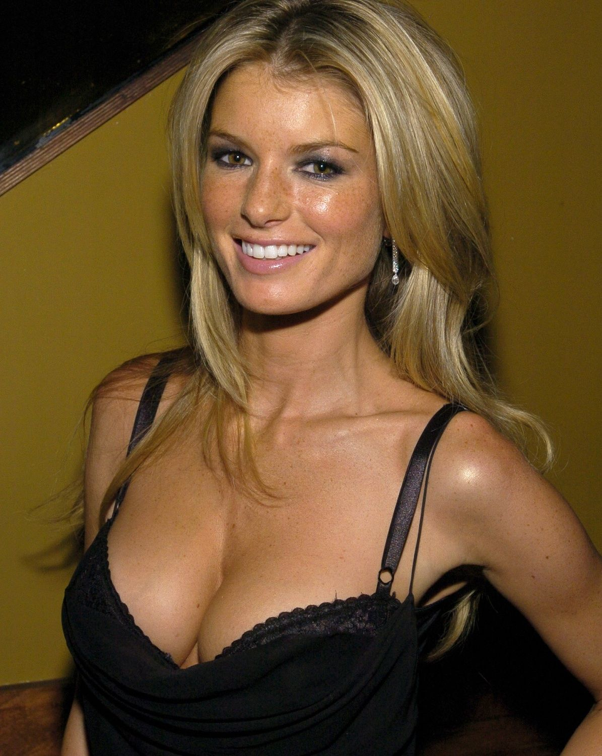 Marisa Miller earned a  million dollar salary - leaving the net worth at 20 million in 2018