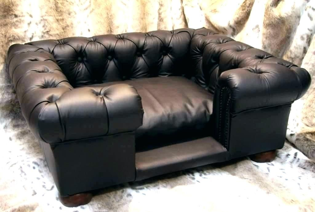 Leather Couches And Dogs Dog Bed