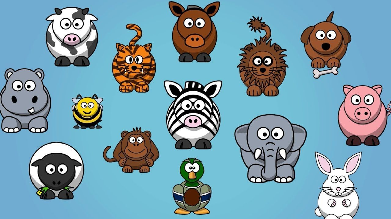 14++ Animal books for toddlers with sound information