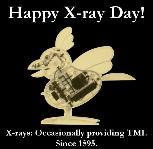 Happy X-ray Day! | Glow Images Blog | Xray humor, Ray day