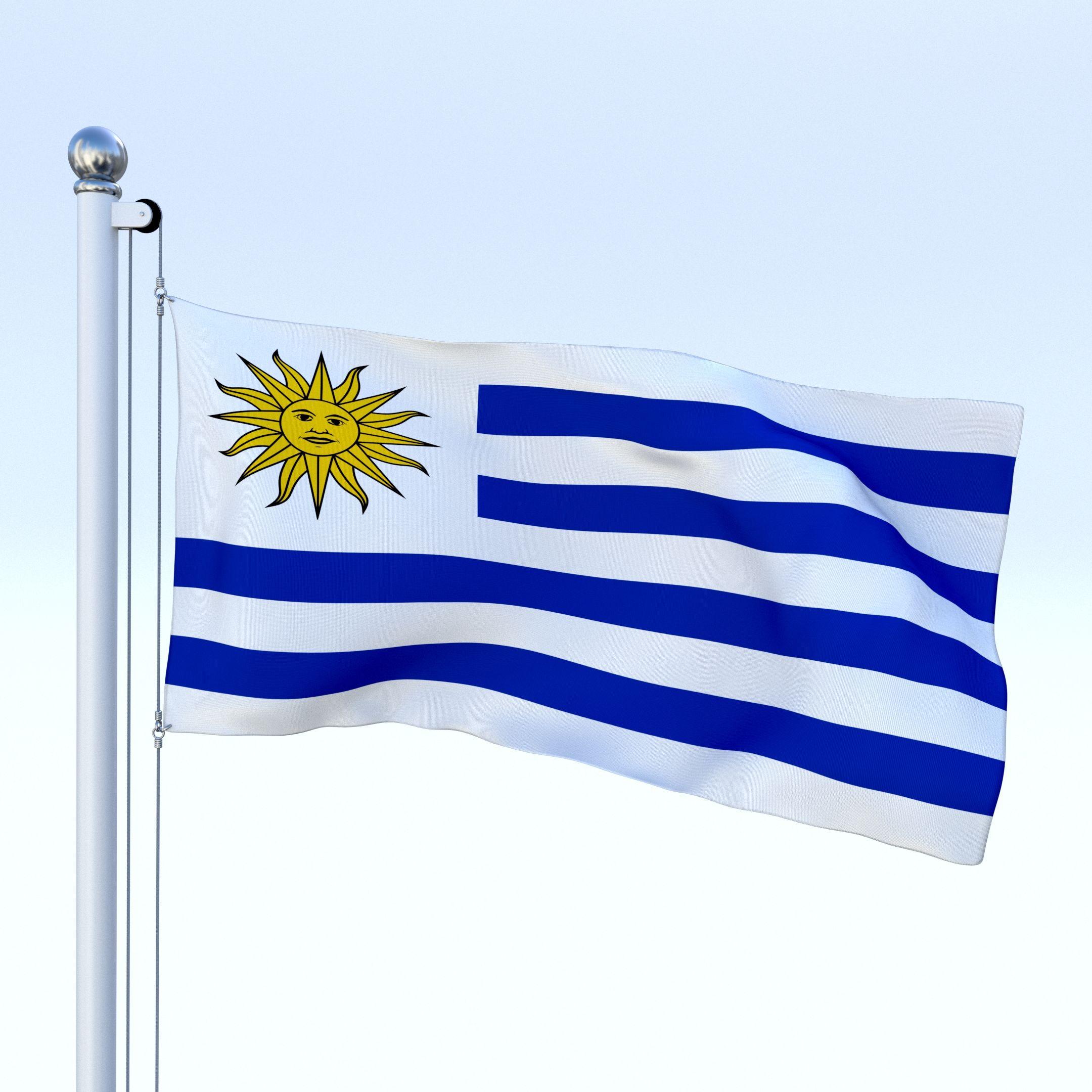 animated uruguay flag aviation pinterest graphic illustration