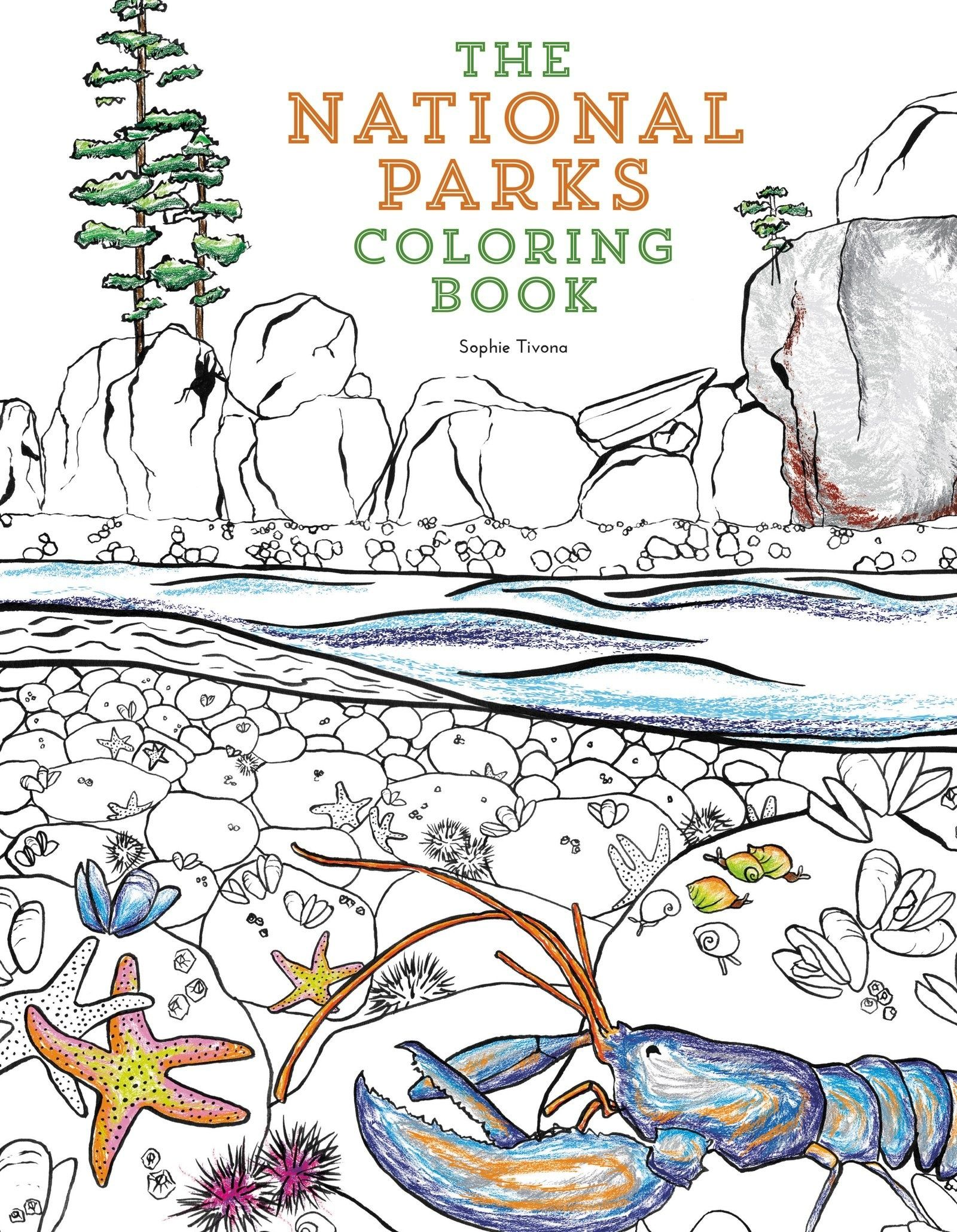 The national parks coloring book for outdoor enthusiasts craft