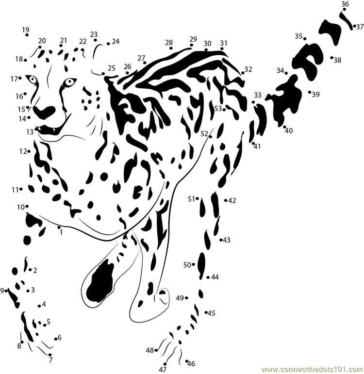 King Cheetah Run Connect Dots Sports Coloring Pages Coloring Pages Winter Apple Coloring Pages