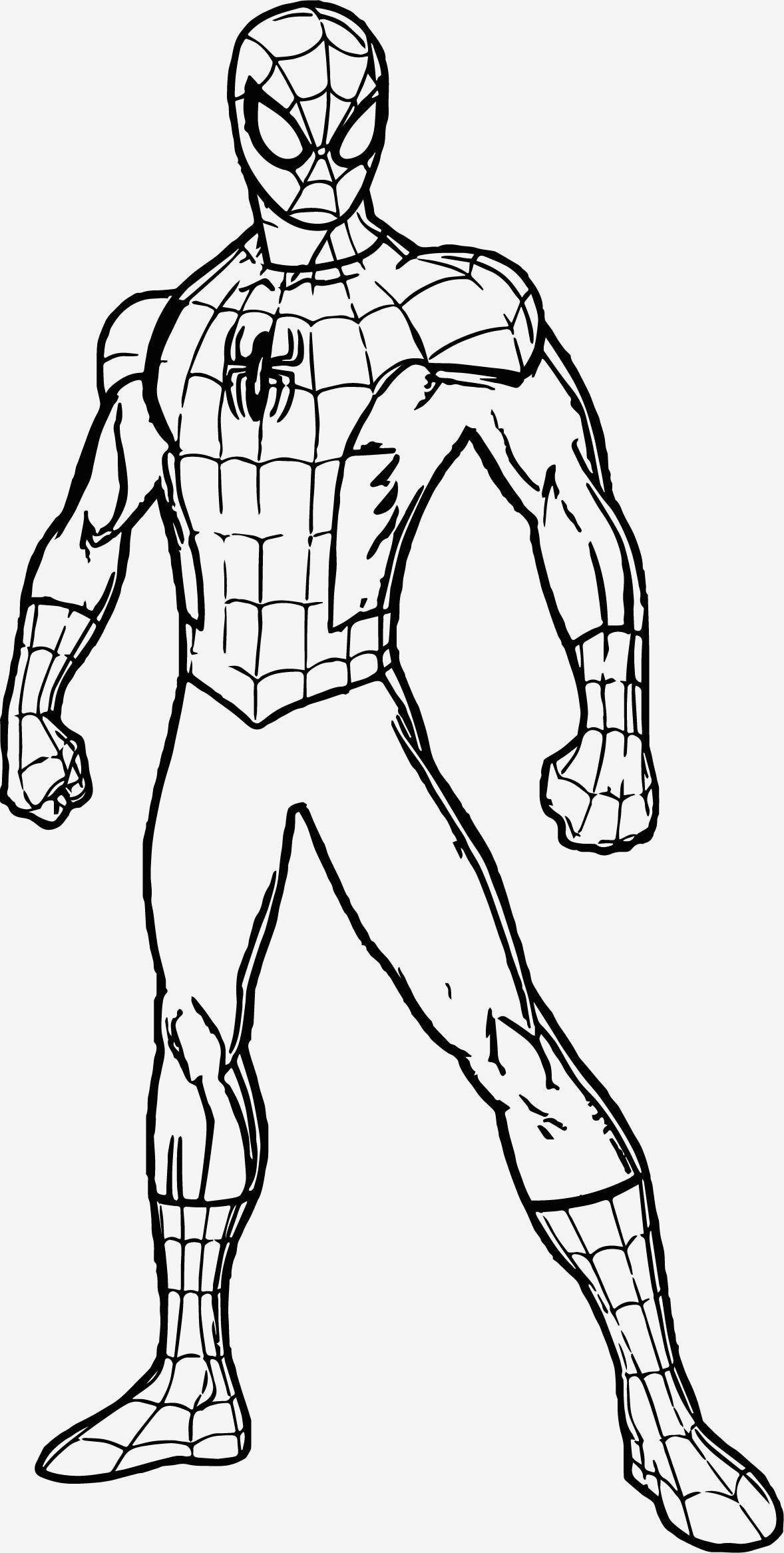 wunderbares bild von freien spidermanmalvorlagen