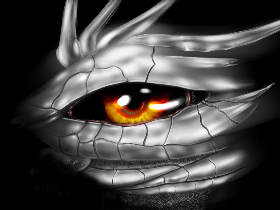 Dragon Eye Silver Scale Dragon Eye Silver Dragon Eyes Wallpaper