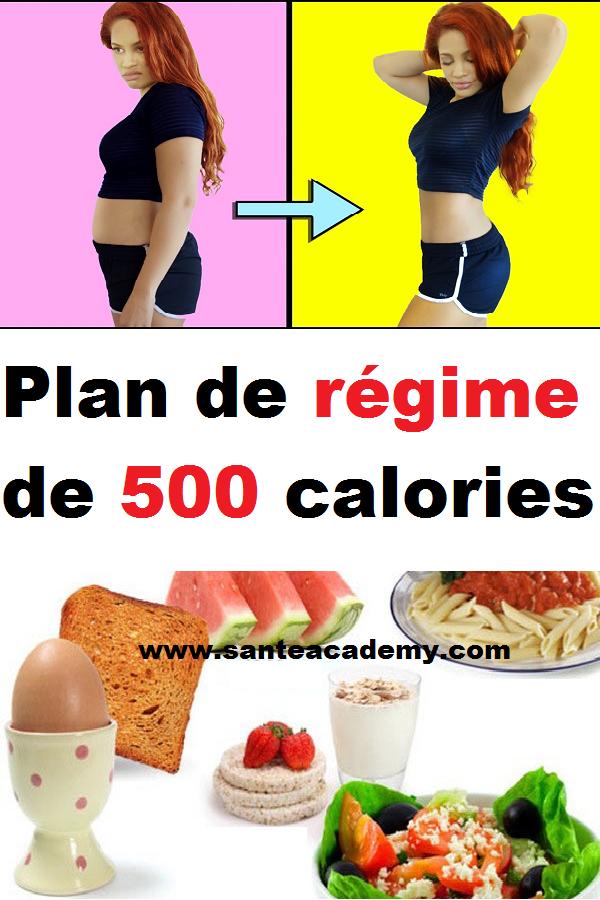 Plan De Regime De 500 Calories 100 Calories 500 Calories Calorie