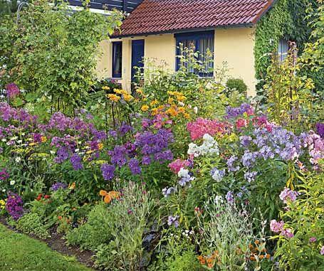Bildergalerie   Mein Schöner Garten