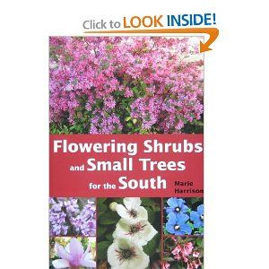 Flowering Shrubs and Small Trees for the South --- http://www.amazon.com/Flowering-Shrubs-Small-Trees-South/dp/1561644390/?tag=tooeperfweddi-20