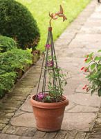 Charmant Treillage U0026 Topiary | Charleston Gardens®   Home And Garden Collection  Classic Outdoor And Garden