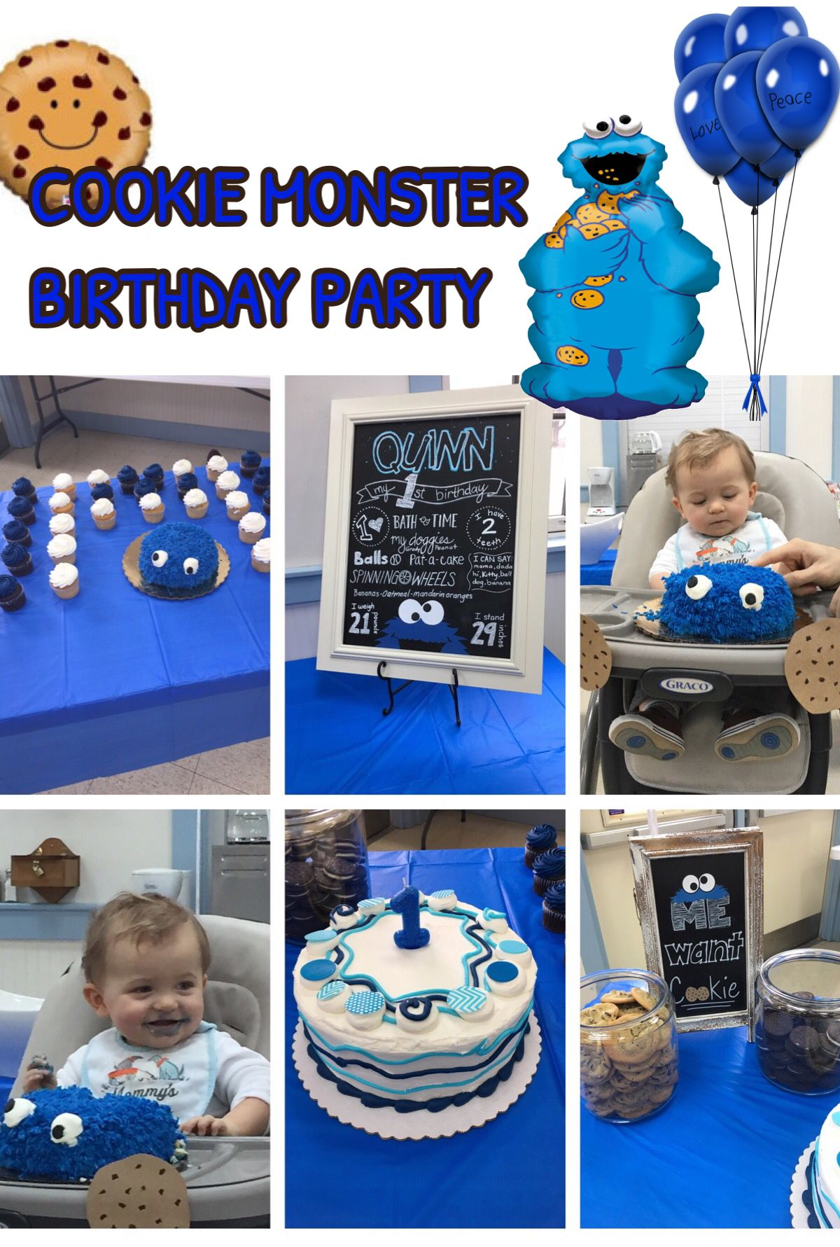 Cookie Monster Themed Birthday Party How to have a successful